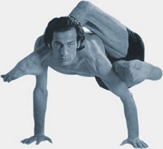Yoga-poses-yoga-postures-large